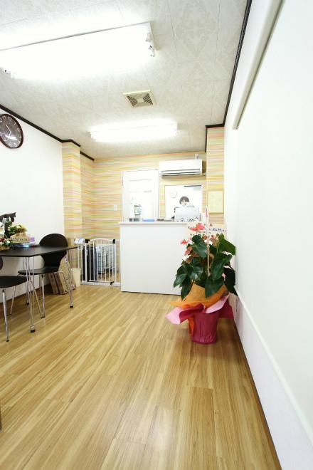 犬の美容室ラベンダー (3).jpg